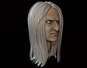 3D asset Hair Long Low poly