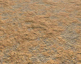 Arid desert terrain seamless 8 PBR 3D model