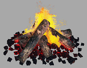 burning Firewood - Camp Fire 3D model