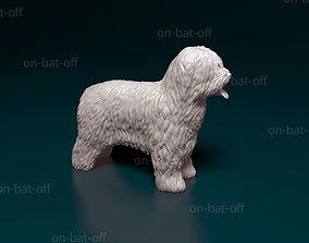 Briard dog 3D print model