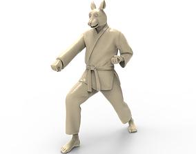 Rabbit Zenkutsu Dachi Stance 3D print model