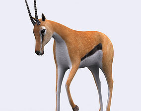 3DRT - Gazelle animated realtime