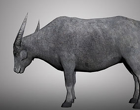 rigged Asia Buffalo 3D model for 3ds Max low-poly 3D