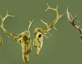 3D asset Haunting Elk Deer Skull