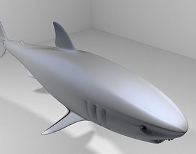 3D Shark - Great White