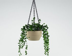 3D Plant hanging