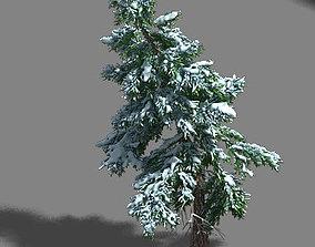 3D model Ice and Snow - Cedar 02