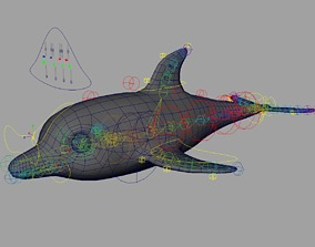 3D asset animated Rig Dolphin