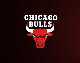Chicago Bulls 3D Logo