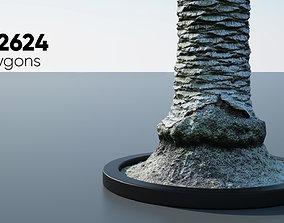 Palm Tree Trunk - 14 3D model