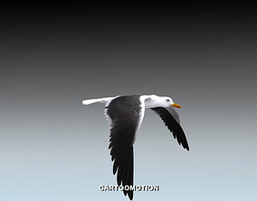 Seagull - Animated 3D asset