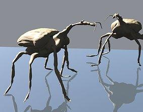 3D print model Trachelophorus giraffa
