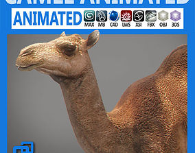 Animated Camel 3D