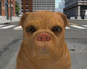FBEX-018 Dog 3D model