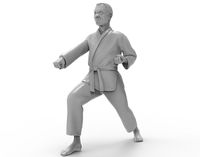 3D printable model Karate Zenkutsu Dachi Stance