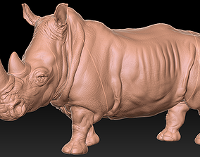 safari 3D printable model Rhinoceros