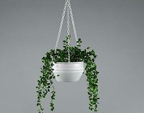 Plant 3D model garden