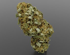 3D Cannabis Bud 04