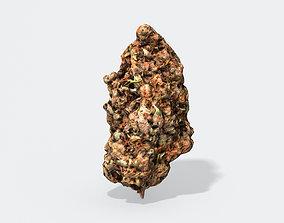 Marijuana Bud 2 - Photoscanned PBR 3D model
