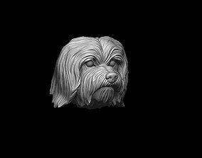 Havanese dog head pendant 3d print model
