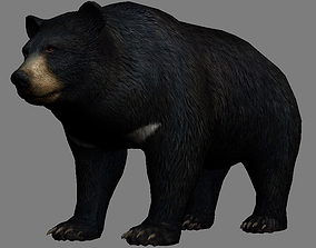 3D asset Bear Realistic Low-Poly Animal