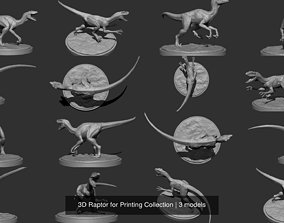 3D Raptor for Printing Collection