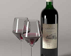 Glass with Wine Bottle 3D