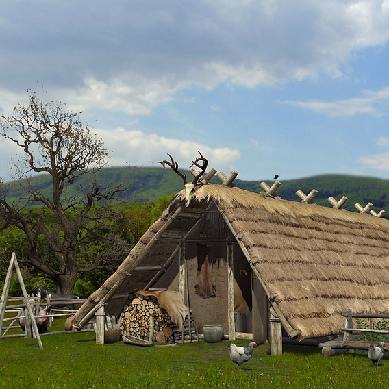 Celtic hut