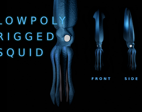 Giant Squid 3D asset rigged