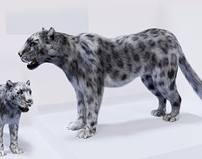 VR / AR ready Realistic Fur Leopard 3D Model NO RIG