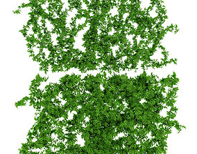 3D Vine leaves wall 2 items