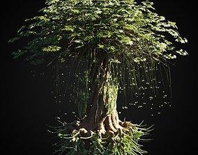 Magic Tree 3D