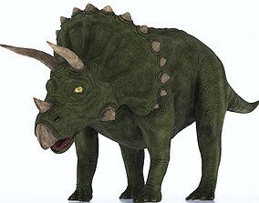 Triceratops Dinosaur 3D model VR / AR ready