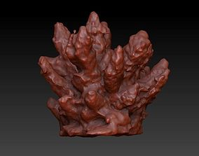 3D model Sea Coral Scan 2