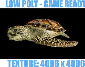 LOW POLY Sea Turtle 3D model
