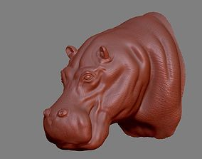 3D printable model Hippopotamus Head