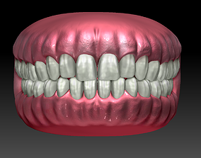3D model Game ready human mouth