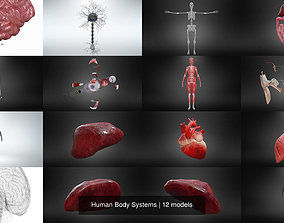 Human Body Systems 3D