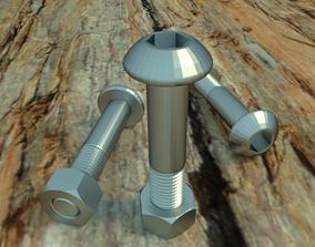 Nuts Bolts 3D model
