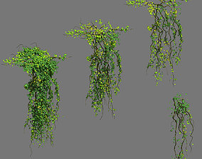 3D Decoration - vines