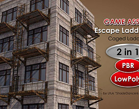 3D model Caged Fire Escape Ladder