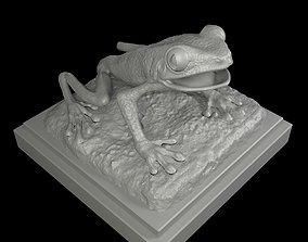forest Red eyed Treefrog 3D Print Model