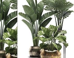 3D Decorative plants in flower pots for the interior 466A