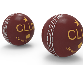 3D model Cricket Leather Ball