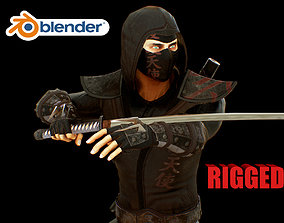 ninja 3D model rigged low-poly