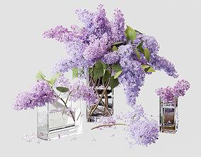 nature 3D model Lilac 4
