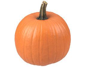 Photorealistic Pumpkin 3D Scan