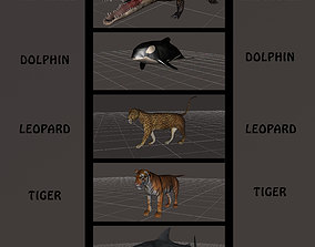 3D BIG ANIMAL PACK