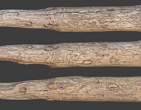 Wood Log 3D model low-poly