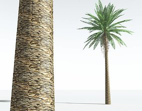 EVERYPlant Date Palm LowPoly 07 --10 Models-- realtime